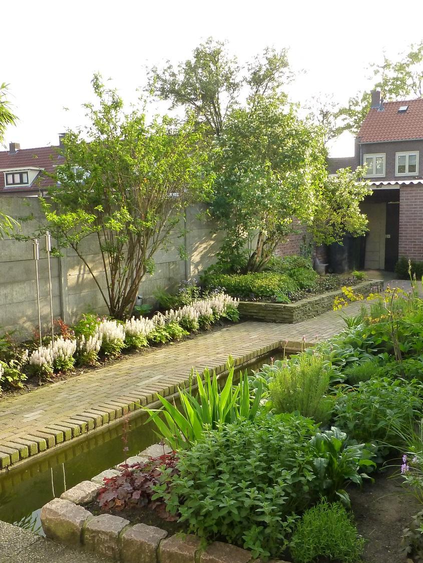 Tuinrenovatie Cornelis Dopperstraat - sfeerbeeld een jaar na aanplant