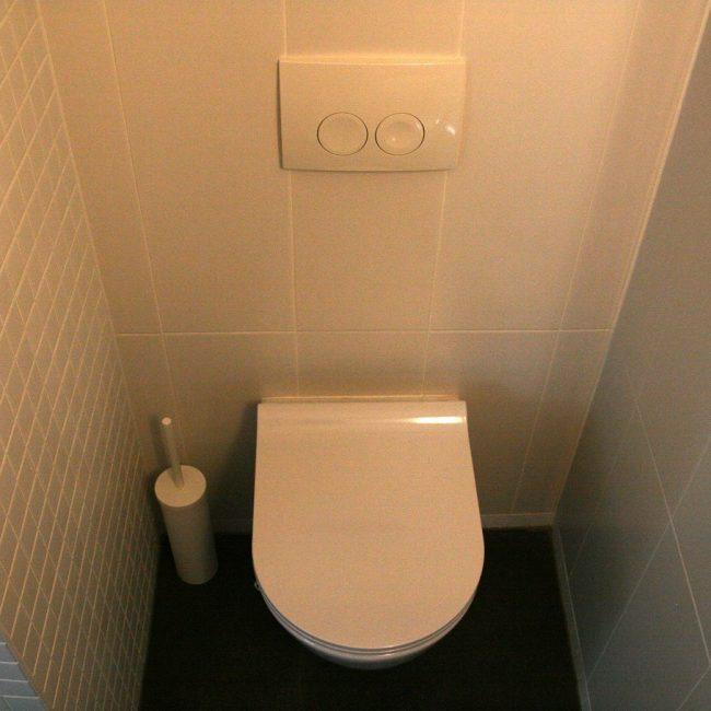 Toiletrenovatie - toilet en spoelknop